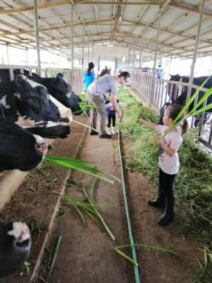 farm tour 16