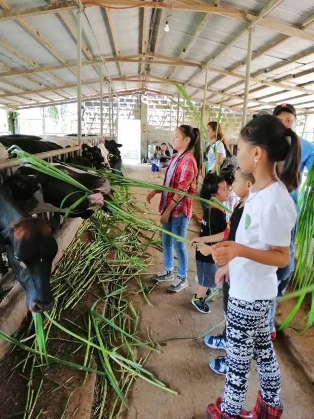 farm tour10