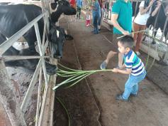 farm tour 28
