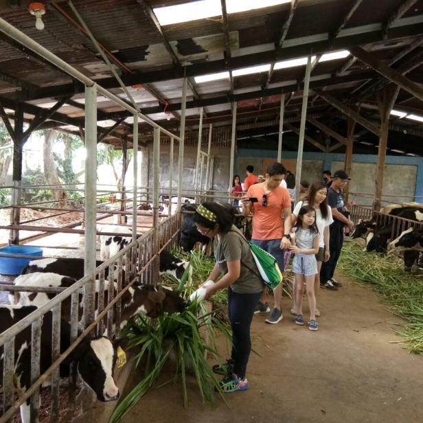 farm tour 4