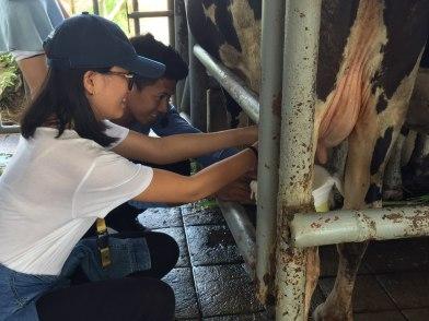 farm tour2
